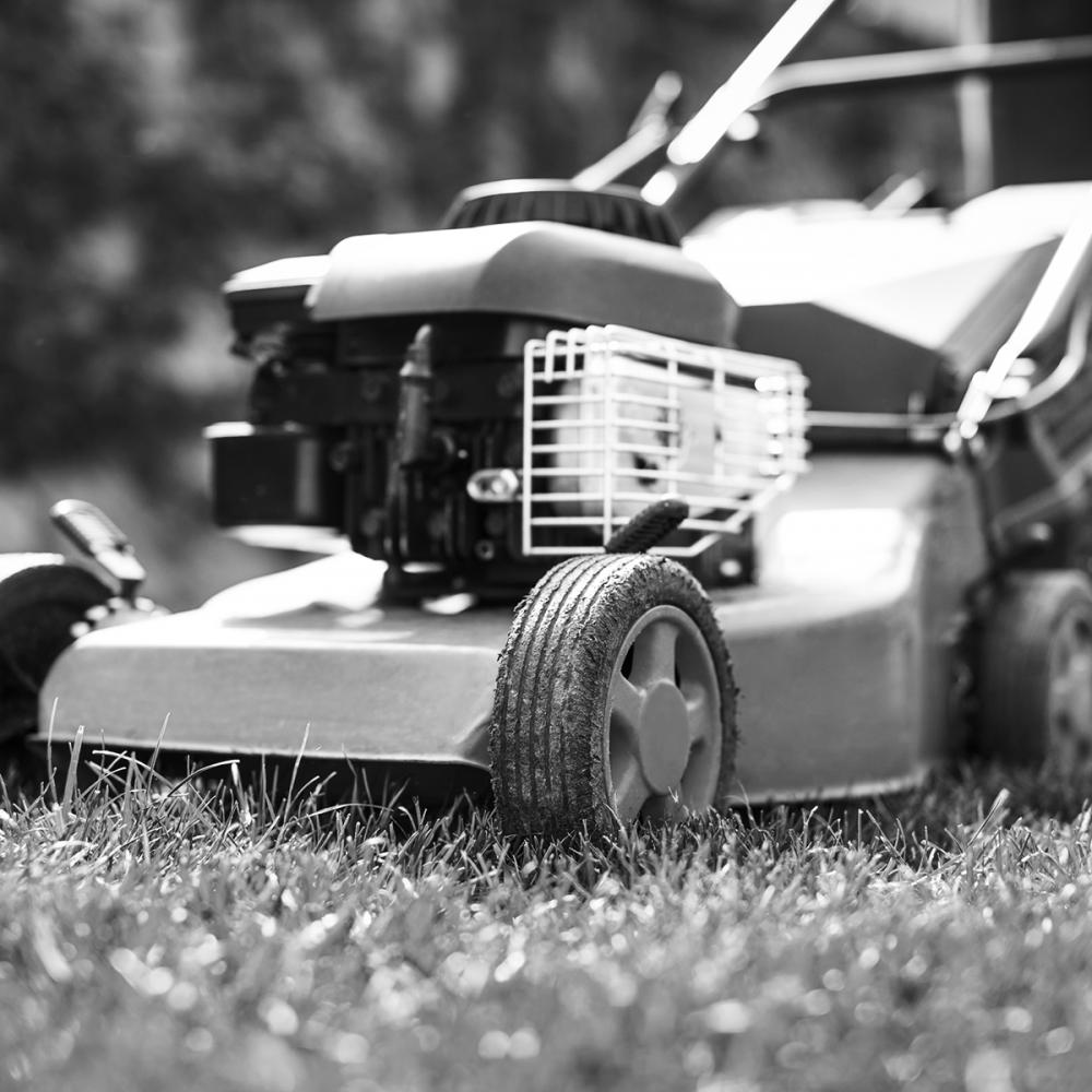 makellos sauber | Grünanlagenpflege